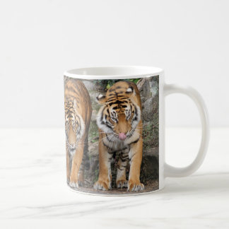Tiger an Auckland-Zoo Kaffeetasse