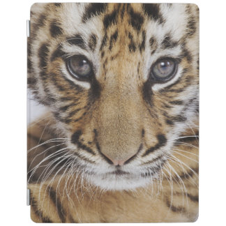 Tiger CUB iPad Smart Cover