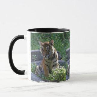 Tiger-CUB-Porträt Tasse
