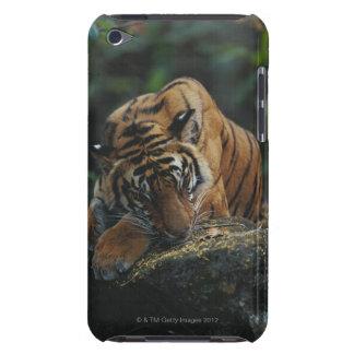 Tiger CUB schläft auf Felsen iPod Touch Case