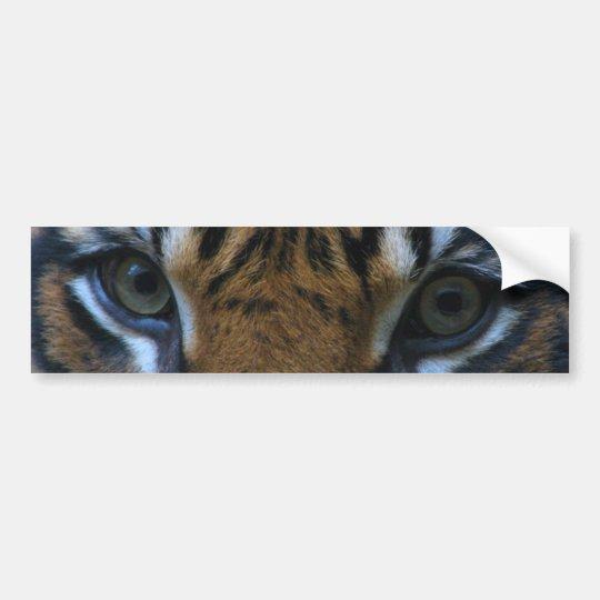 Tiger eyes autoaufkleber