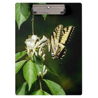 Tiger-Frack-Schmetterlings-Klemmbrett Klemmbrett