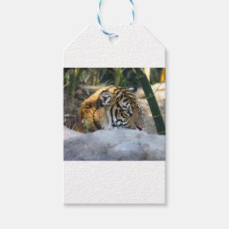 Tiger Geschenkanhänger