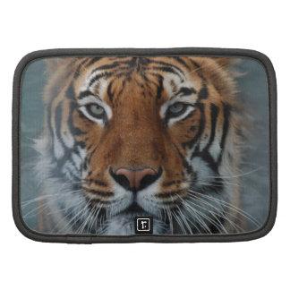 Tiger-Gesicht Planer