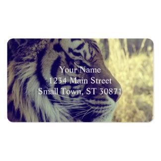 Tiger-Gesichts-beiseite spezieller Lichteffekt Visitenkarten