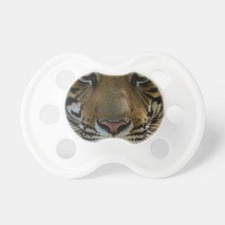 Tiger-Gesichts-nahes hohes Schnuller