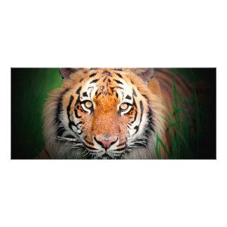 Tiger-Gestell-Karte Werbekarte
