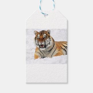 Tiger im Schnee Geschenkanhänger