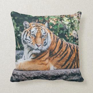 Tiger Kissen