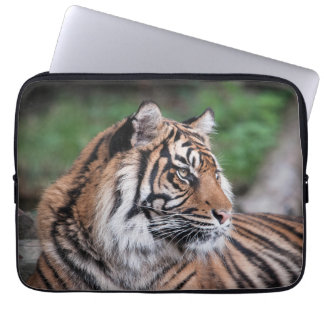 Tiger-Laptop-Computer Hülse Laptop Sleeve