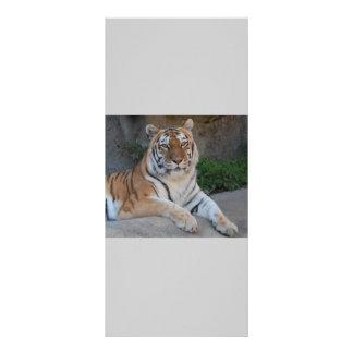 Tiger-Liebe Werbekarte