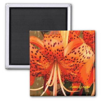'Tiger Lily Quadratischer Magnet
