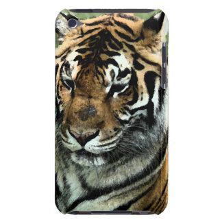 Tiger-Nah-oben Barely There iPod Cover