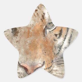 Tiger nah oben im Watercolor Stern-Aufkleber