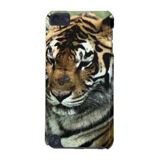 Tiger-Nah-oben iPod Touch 5G Hülle
