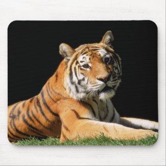 Tiger-Nahaufnahme Mauspad