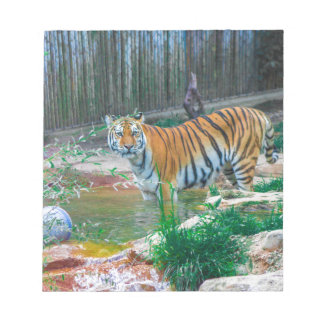 Tiger Notizblock