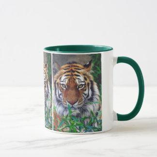 Tiger-Starren Tasse
