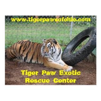 Tiger-Tatzen-exotischer Rettungsdienst Postkarte