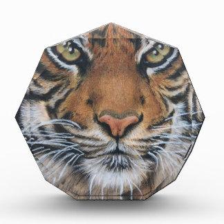 Tiger-Tier-Tierkunst Auszeichnung