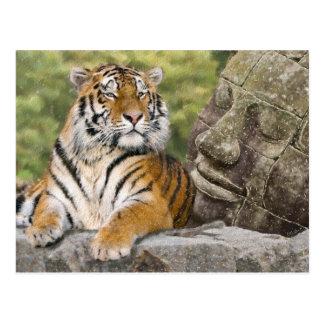 Tiger und buddhistischer Tempel Postkarte