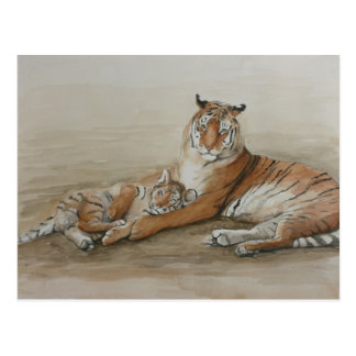 Tiger-und CUB-Katzen-Kunst-Postkarte Postkarte