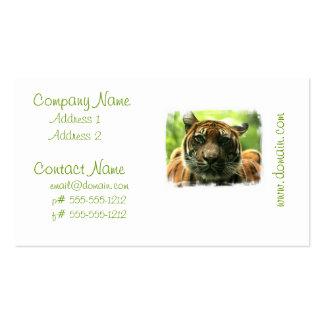 Tiger-Visitenkarten