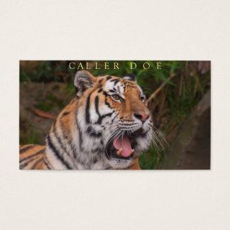 Tiger-Volkstanz-Anrufer-kundengerechte Karte