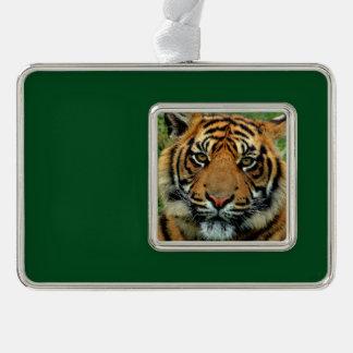 Tiger-Weihnachtsbaum-Verzierung Rahmen-Ornament Silber