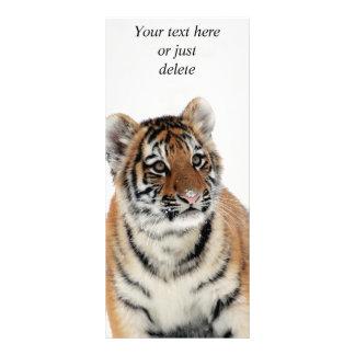 Tigerjunges Gestellkarte des schönen Fotos des Werbekarte