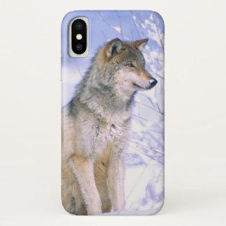 Timberwolf, der im Schnee sitzt, Canis Lupus, iPhone X Hülle