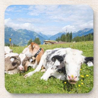 Tirol, Österreich Getränkeuntersetzer