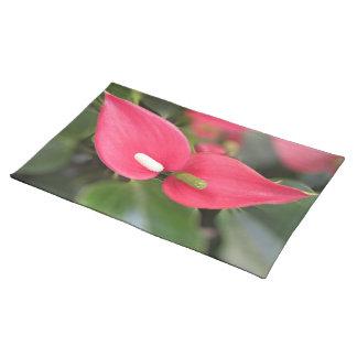 Tischset - rote Blütenschweif-Zwillinge