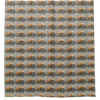 Toadstools auf einem Baum-Stamm-Duschvorhang Duschvorhang