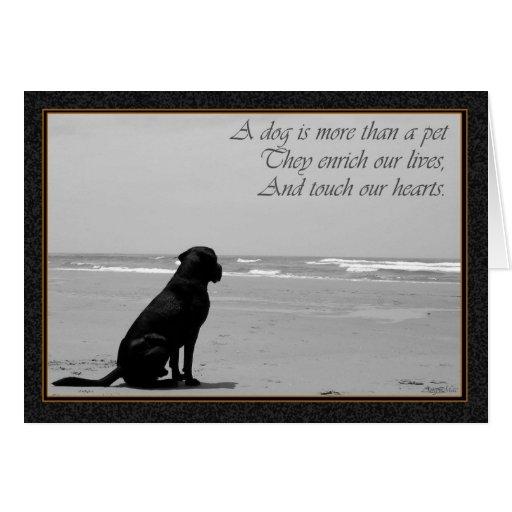Tod eines Haustieres, Hundetod, traurig, Hund, der Karte