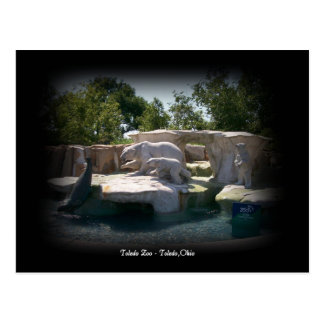 Toledo-Zoo-Eisbär-Statue-Postkarte Postkarte