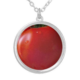 Tomate-mittleres Silber überzogen ringsum Versilberte Kette