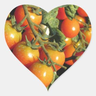 Tomate-Pflanzen, die im Garten wachsen Herz-Aufkleber