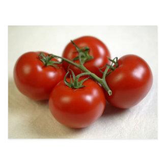 Tomaten auf der Rebe für Gebrauch in nur USA.) Postkarte