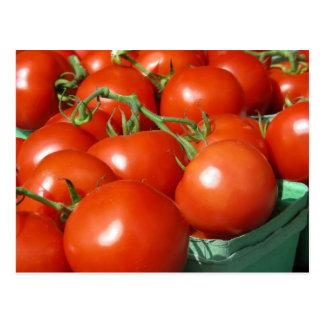 Tomaten Postkarte