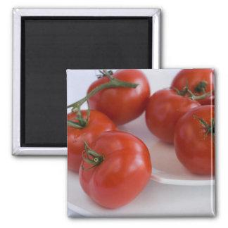 tomatoes_1 quadratischer magnet