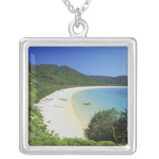 Tonga-Bucht, Abel Tasman NP, Südinsel, neu Versilberte Kette