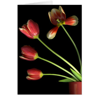 Topf O Tulpen Karte