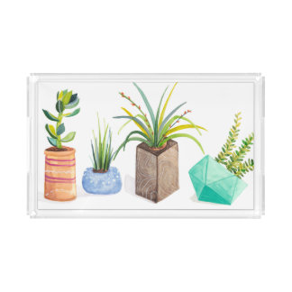 Topf Succulents Acryl Tablett