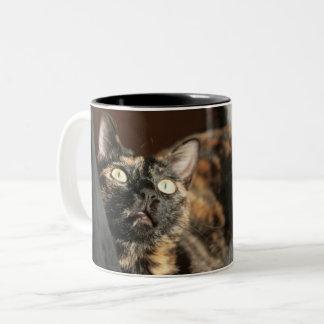 Tortitude mug - tortoiseshell cat zweifarbige tasse