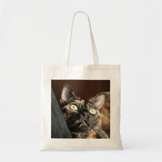 tortoiseshell cat bag tragetasche