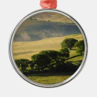 Toskana Huegel Silbernes Ornament
