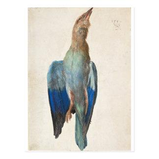 Tote blaue Rolle durch Albrecht Durer Postkarte
