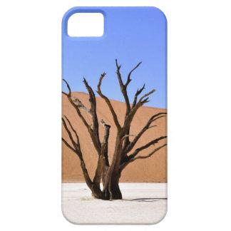 Toter Baum in Namibischer Wüste Hülle Fürs iPhone 5
