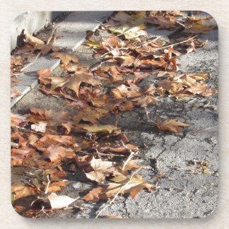 Totes Blätter, das aus den Grund im Fall liegt Getränkeuntersetzer